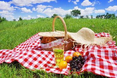 Где можно устроить пикник
