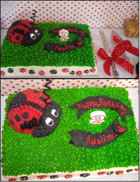 Детский День Рождения-пикник в стиле божьей коровки